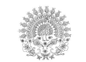 Santos para colorir - Pavão do Orquidário